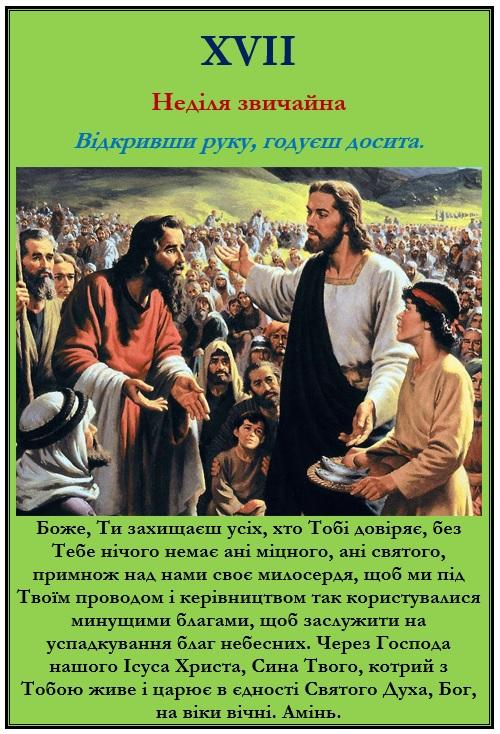 XVII Неділя звичайна