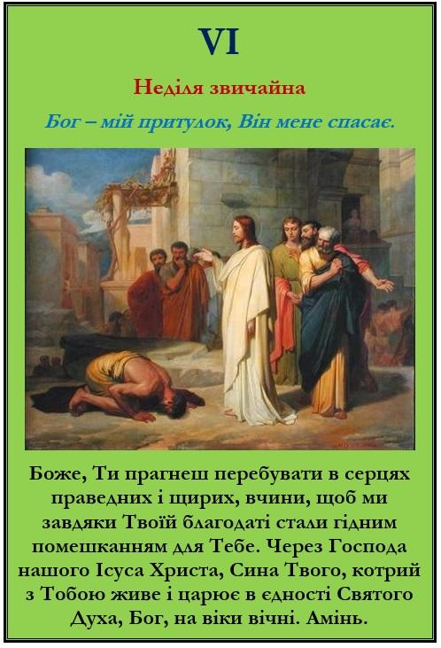 VI Неділя звичайна